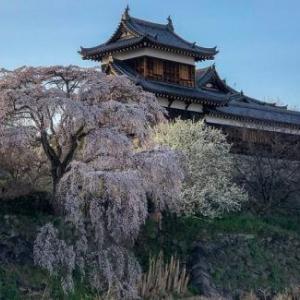 筒井順慶は松永久秀と争い 明智光秀の与力になった大和の大名