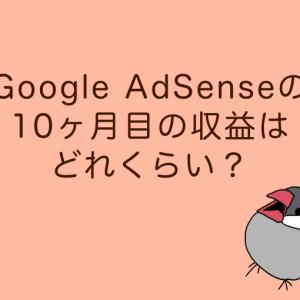 【Google AdSense】10ヶ月目のグーグルアドセンスの収益は?