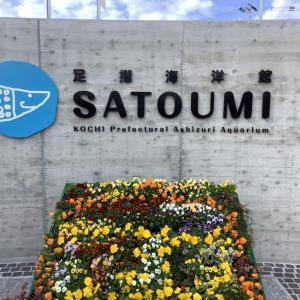 リニューアルした水族館『高知県立足摺海洋館SATOUMI』がオススメ