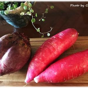 ワイヤープランツと赤い野菜