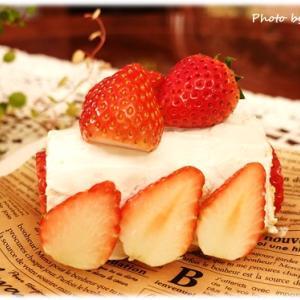 手作りケーキで祝う愛犬の誕生日