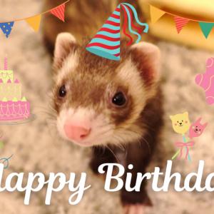 我が家の悪戯っ子が1歳の誕生日を迎えました♪