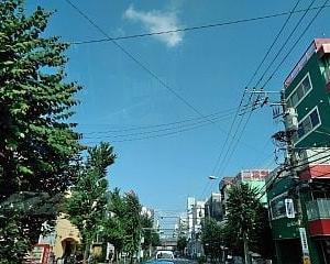 2019' 梅雨明け♪