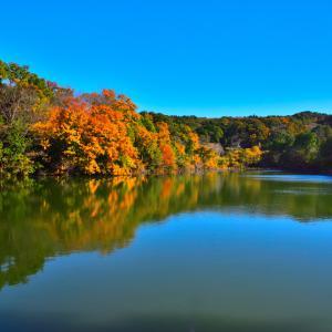小呂池の紅葉