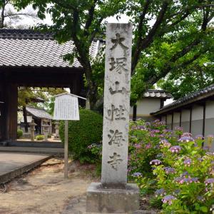性海寺の素晴らしい紫陽花