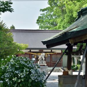 御裳(みもじ)神社の紫陽花