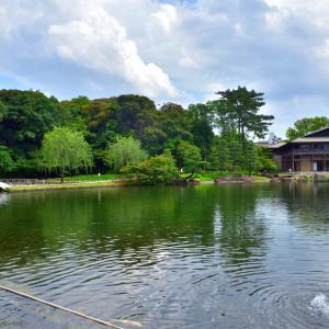 徳川園、和傘を見たくて