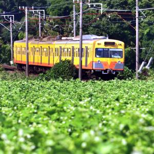 三岐鉄道×蕎麦畑