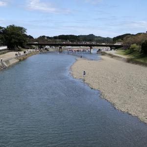 伊勢神宮の神嘗祭に行ってきました。川曳き。