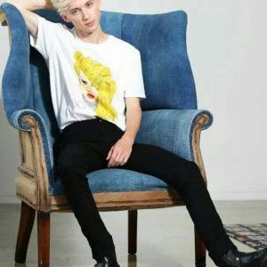 トロイ・シヴァン トロイと椅子