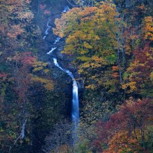 秋に彩る渓谷 / Waterfall at valley in Autumn