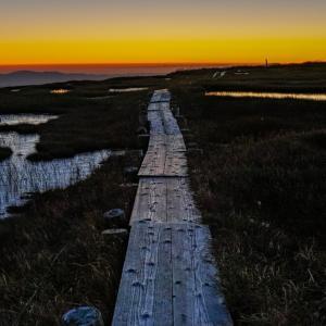 朝焼けへ続く道 / The Road to Sunrise
