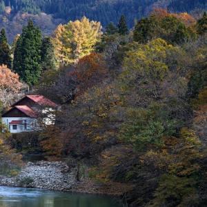 秋に包まれる一軒家 / A House in Autumn