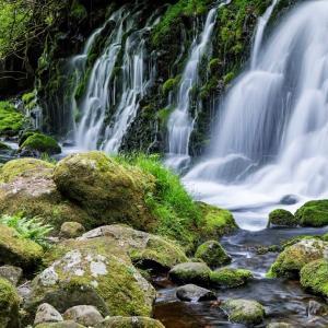 緑山流水 / Green Mountain and Running River