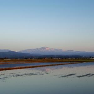霊峰月山を遥かに望む / Mt.Gassan beyond the paddy fields