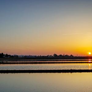 明日へ紡ぐ光 / Paddy fields and sunset