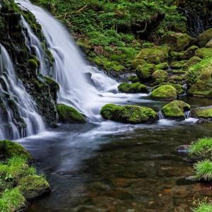 岩に染み入る滝の声 / The sounds of waterfall