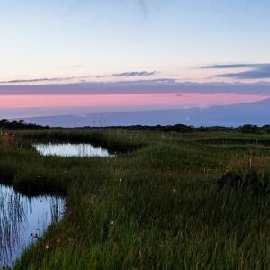 静けき晩夏の宵 / The stillness of a late summer dusk