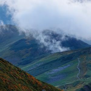 秋色に続く山道 / Autumn leaves and mountain path