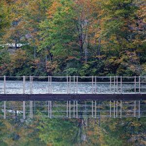 初秋を渡る浮橋 / Floating bridge in early autumn