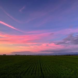 庄内平野の夕暮れ / Sunset glow at Shonai plain