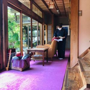 昭和な田舎っぺ、ピンク絨毯(≧▽≦)
