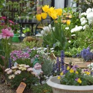 庭を花いっぱいに♪