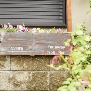 庭をうろうろ