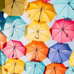 学校が始まり早速傘を忘れたそうだが、怖い動画を見たのでちょっと落ち着こう。😔