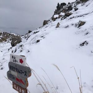 積雪が多い恵山権現コース
