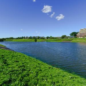上谷沼調整池、荒川貯水池