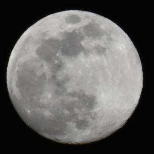8月4日満月 スタージェンムーン