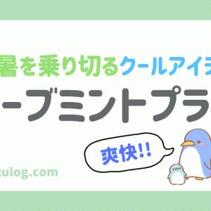 【評判・口コミ】ミントプラス(テクノエイト)でシャンプーが超爽快