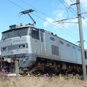 EF510-509号機を撮影!