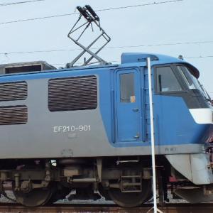 EF210-901号機を撮影!