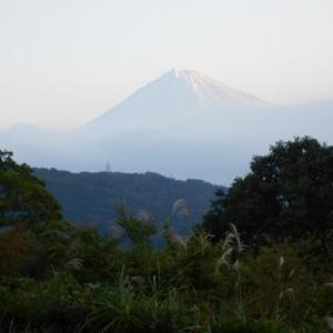富士川SA下り