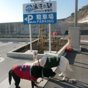 小田原漁港の駅(TOTOKO)