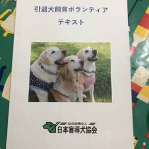 引退犬ボランティア