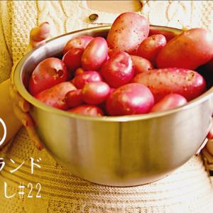 【自給自足】じゃがいもの収穫|油を使わないジャガイモ料理|スーパーフード