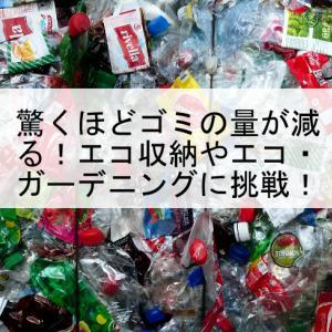 驚くほどゴミの量が減る!エコ収納やエコ・ガーデニングに挑戦!