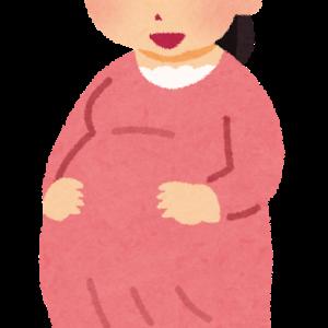 【妊活→妊娠26w6d】ファミリー学級