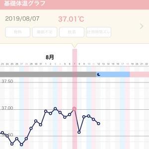 【妊活D1】今周期、タイミング法で頑張る!