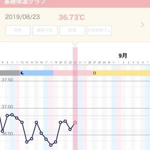 【妊活D12】 ガタガタな基礎体温再び