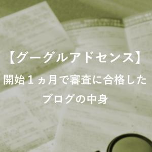 【グーグルアドセンス】開始1ヵ月で審査に合格したブログの中身