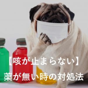 【咳が止まらない】薬が無い時の対処法