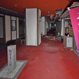 稲取観光ホテル(エメラルド七島) ④