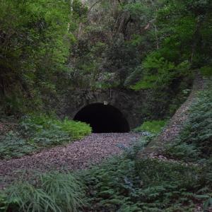 佐白山 笠間城址・笠間トンネル