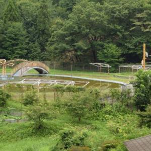 山の麓の廃プール