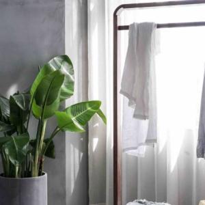 【画像あり】クローゼットの洗濯物入れスペースを整理した。