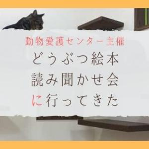 どうぶつ絵本の読み聞かせ会がはじまった兵庫県動物愛護センターに参加したよ